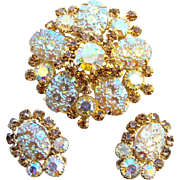 Juliana DeLizza & Elster Rhinestone Brooch Earrings Oval Floral Pressed Glass