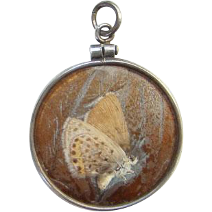 Antique Two Sided Victorian Sterling Silver Butterfly Moth Wing Necklace Pendant Under Glass Mourning Jewelry