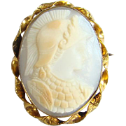 Edwardian Shell Cameo Brooch Pin 10K Gold Filled Goddess Athena Female Warrior