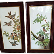 Ca. 1850 English Pair of Paintings on Porcelain; Birds in Fruit Tree
