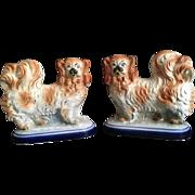 English Staffordshire 'Pekingese' Dog Figurines  C. 1900