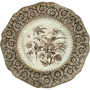 English Brown Transfer Ware, C1840