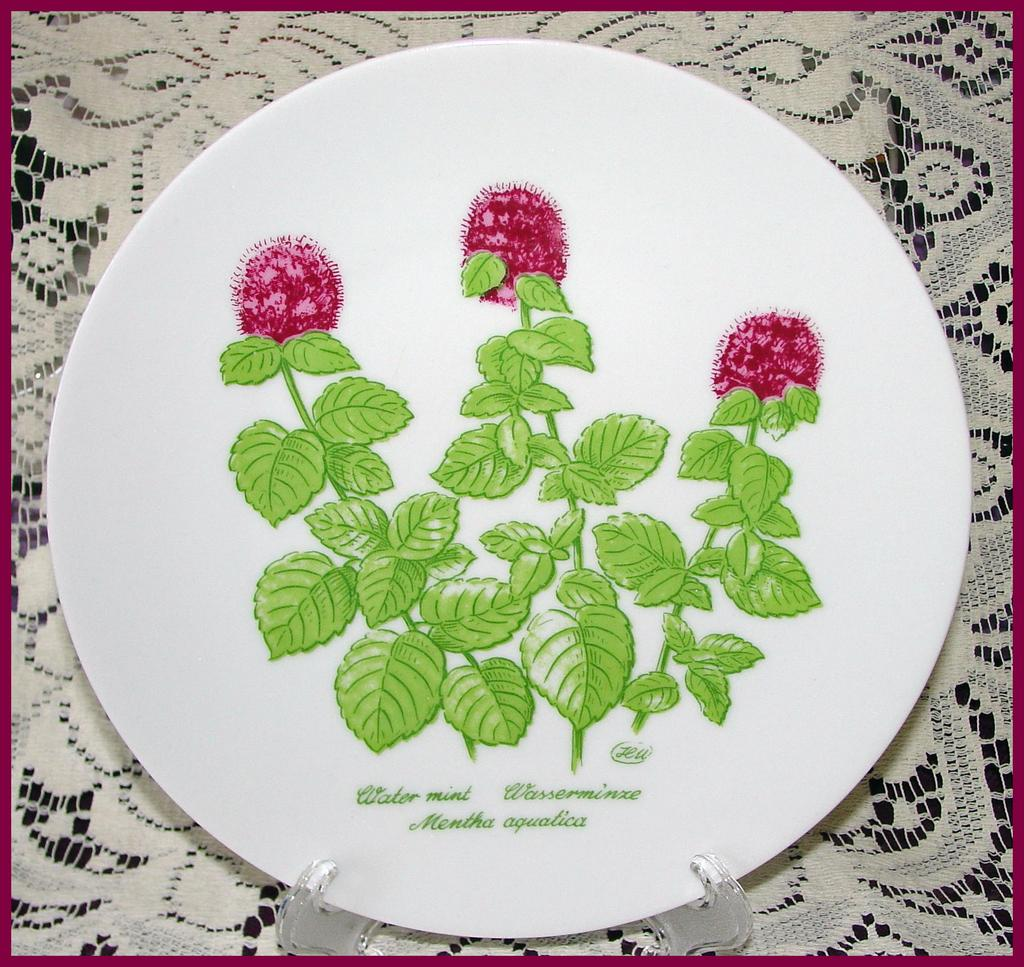Bareuther Waldsassen Wild Herb Plates ~ Set of 6
