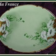 GDA France Limoges Hand Painted Floral Platter