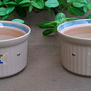 Noritake Arizona Ramekin ~ Set of 2