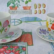Heinrich Porcelain Primavera Footed Cup & Saucer Set