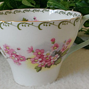 Shelley  Fine Bone China Tea Cup Blossom Pattern # 13523