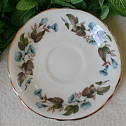 Arklow Fine Bone China Saucer Pattern ARK44