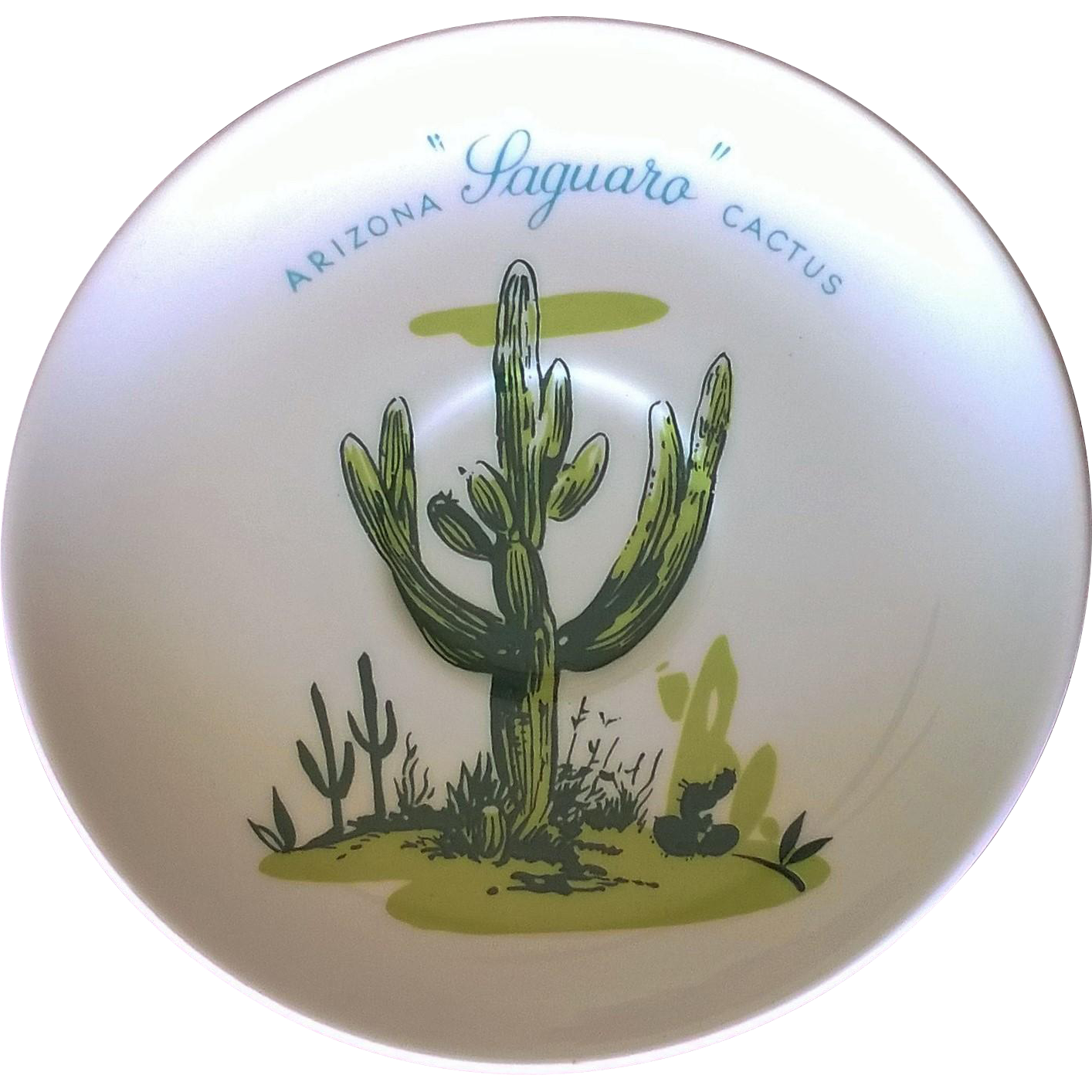 Blakely Exclusive Arizona Cactus Dinnerware Saucer Set