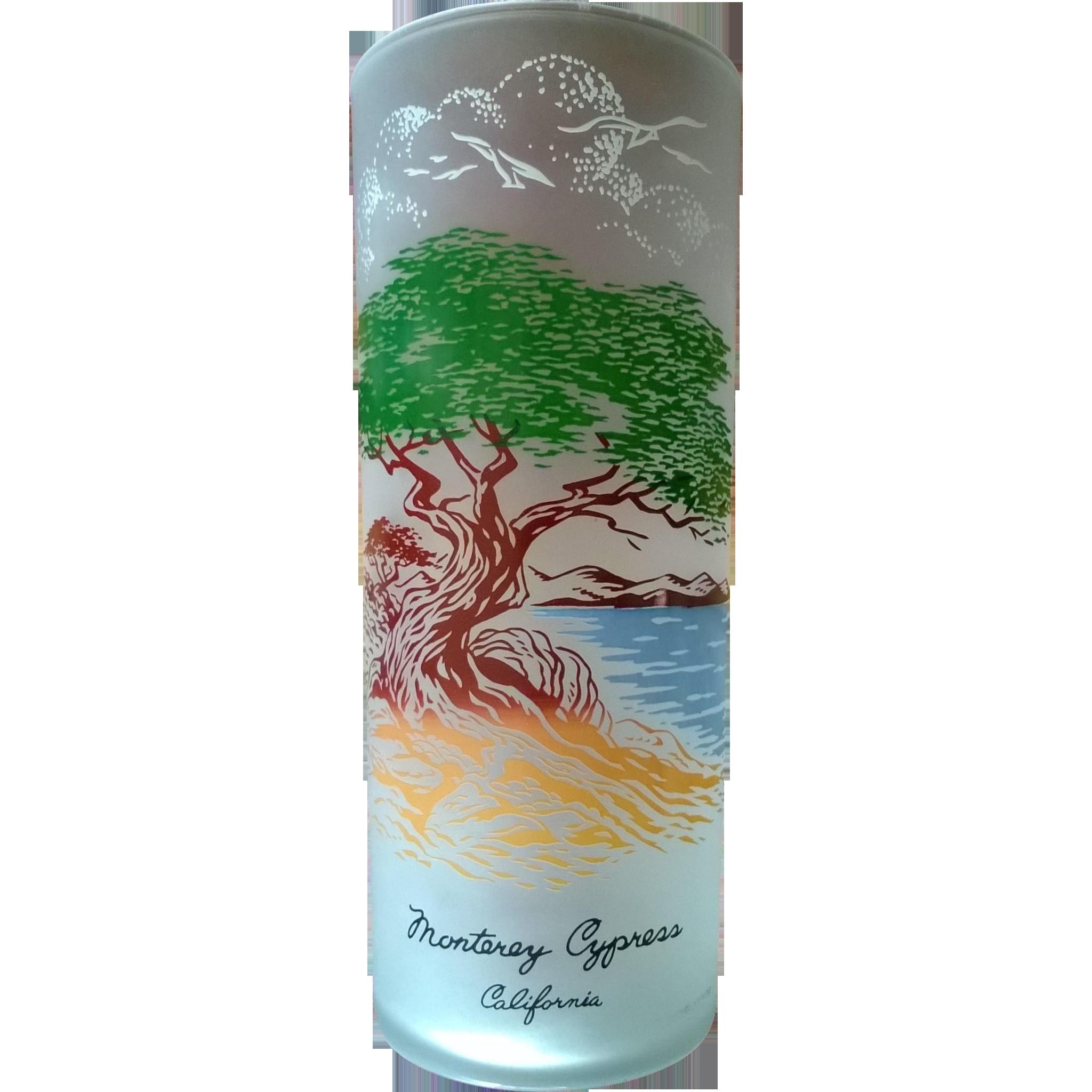 Libbey Souvenir Highball  Glass Monterrey Cypress 50's - 60's