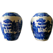 Vintage Blue Willow Salt & Pepper Set