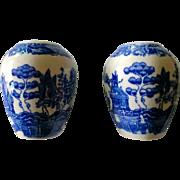 Vintage Blue Willow Salt & Pepper Set