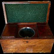 Antique Regency Mahogany Tea Caddy Box w Custom Interior