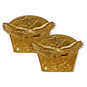 7039 Pair of 19 c. Antique Gilt Bronze Eagle Bookends