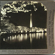 Cherry Blossom Time in Washington D.C. - Keystone Stereo View