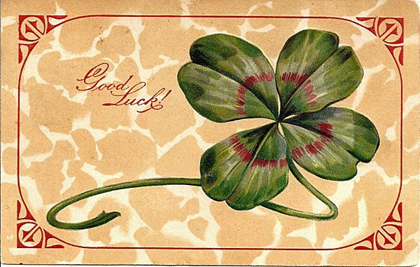 Four Leaf Clover Good Luck Postcard