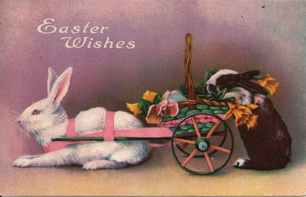 Easter Postcard - White Rabbit Pulling Basket with Black and White Rabbit Trailing Behind
