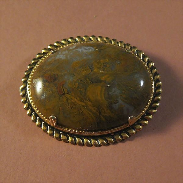 Picture Agate Oval Pin in Gold-tone Setting