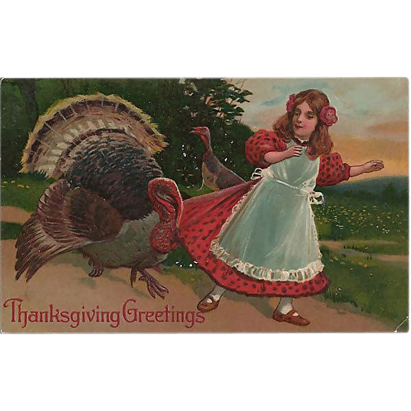 Thanksgiving Postcard Naughty Turkey Pulling on Girl's Dress