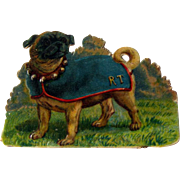 Pug Dog Die Cut / Dog die cut / RT Dog / Pug Dog with Coat / Bell Collar Dog
