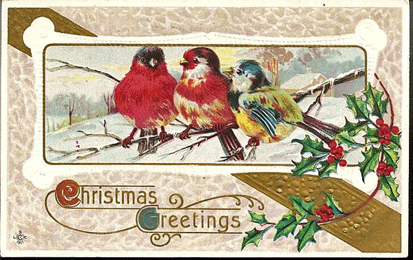Christmas Greetings Postcard with a Trio of Lovely Birds