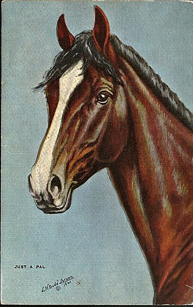 Postcard Of Horse From Painting By Dude Larsen From