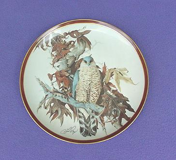 Vintage Cooper's Hawk China Plate