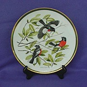 Vintage Woodland Birds of the World Painted Redstart Plate