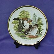 Vintage Arthur Singer Chaffinch Collector Plate