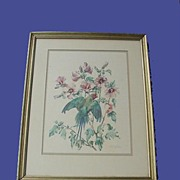 Vintage Plum-headed Parakeet Print