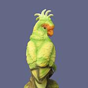 Vintage Byron Cockatoo Figurine