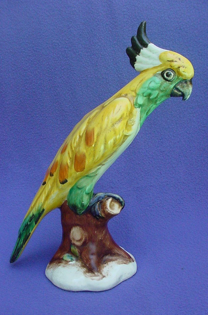 Colorful Italian Cockatoo