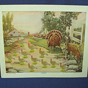 1920's - 30's Turkey Sunday School Attendance Card
