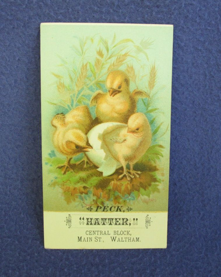 Hatter Advertising Trade Card w/ Chicks