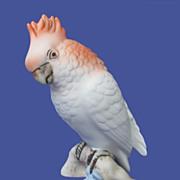 Royal Dux Cockatoo Figurine