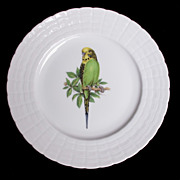 Hutschenreuther Germany Green Budgie Plate