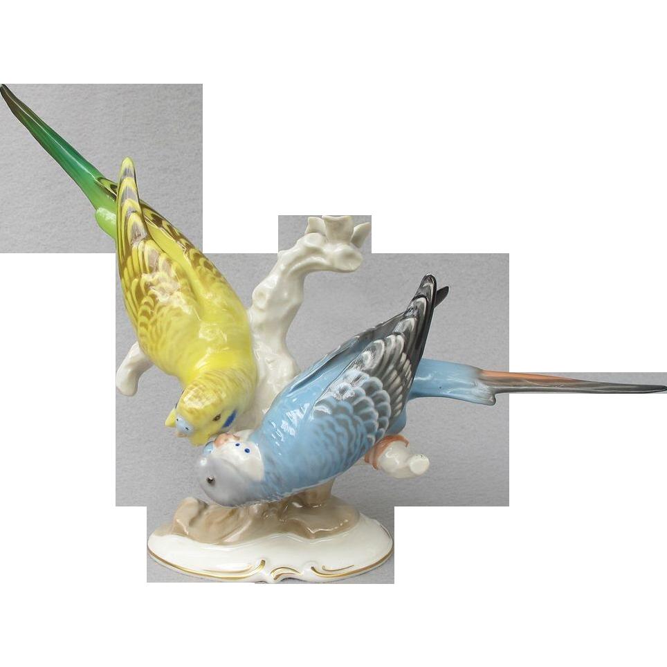 Mid Century Hutschenreuther Parakeet Budgie Figurine K. Tutter