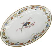 Haviland Limoges Arcadia Parrot Relish Tray Server