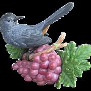 Lenox Gray Catbird on Grapes