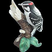 Lenox Downy Woodpecker Garden Birds Series