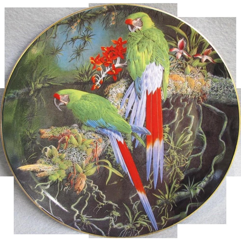 Wedgwood Buffons Macaw Fragile Paradise Plate