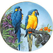 Wedgwood of England Blue-throated Macaws Plate