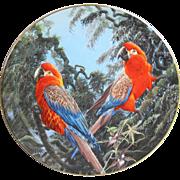 Wedgwood Fragile Paradise Cuban Macaws Plate