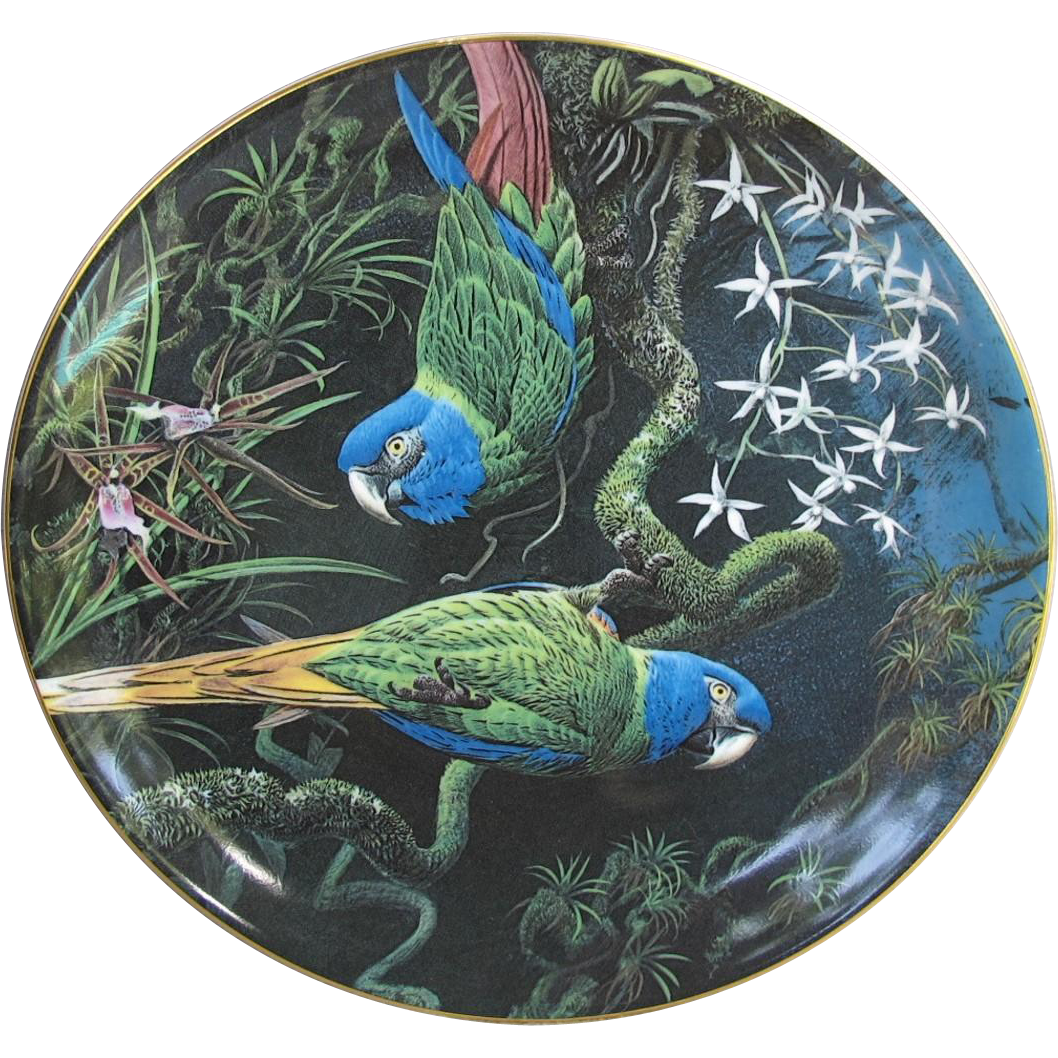 Wedgwood Fragile Paradise Blue Headed Macaws Plate