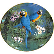 Wedgwood of England Blue and Gold Macaw Plate