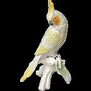 ENS Germany Cockatiel Figurine