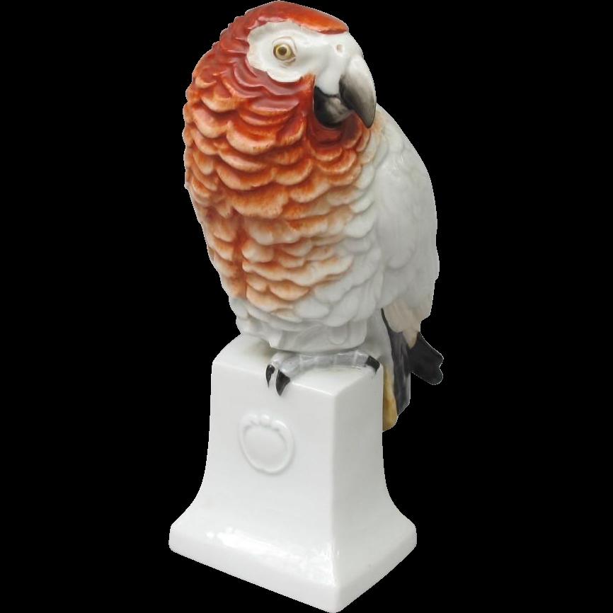 Rosenthal Moldenhauer African Grey Parrot Figurine