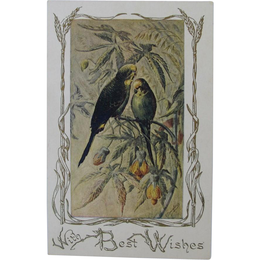 Antique Budgie Christmas Postcard