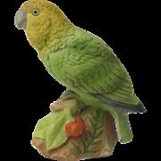 Vintage Miniature Amazon Parrot Figurine