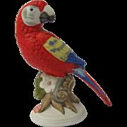 Miniature Scarlet Macaw Parrot Figurine